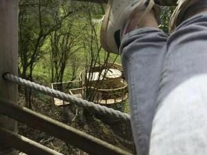 spa et détente dans les arbres
