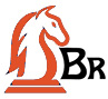 dbr domain brokerage