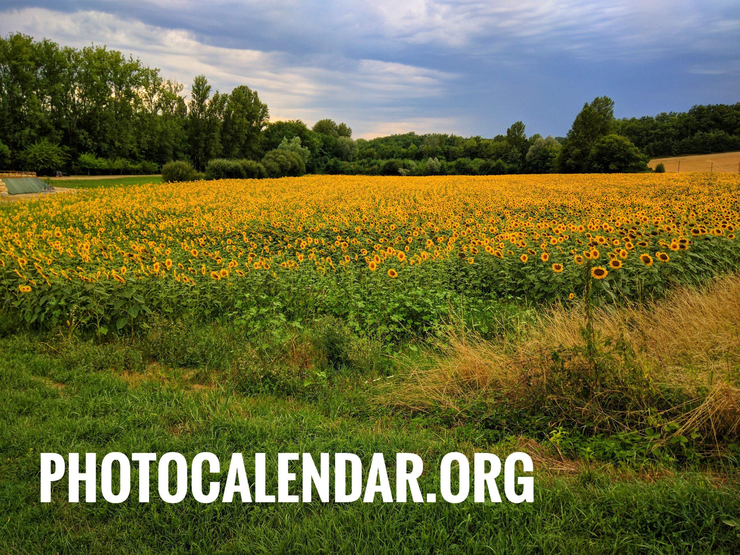 Photo Calendar: PhotoCalendar.org, domain name for sale