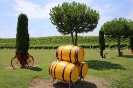 WineRelais.com, domain name for sale
