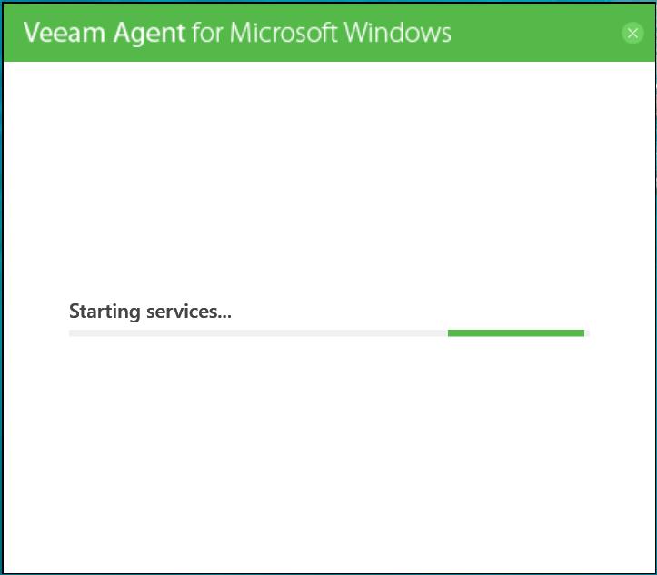 domalab.com Veeam Agents start services