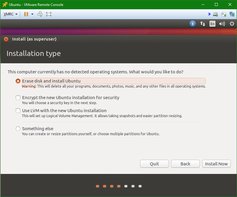 Linux Ubuntu vm install type
