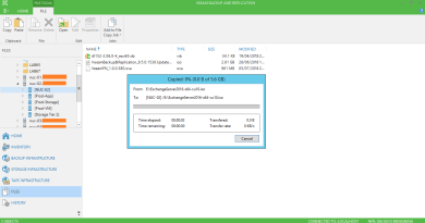 Copy files directly from Veeam console. Yes you can!