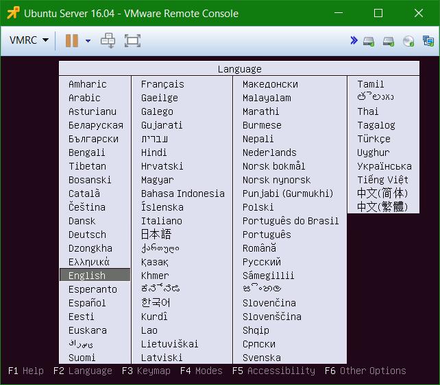 domalab.com Install Ubuntu Server VMware boot language