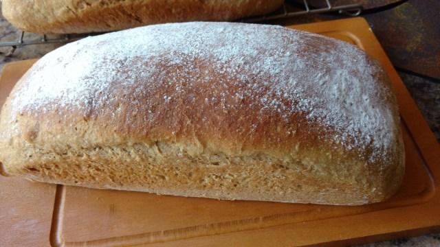 pão caseiro com cerveja e 3 farinhas