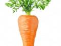 carrotsales