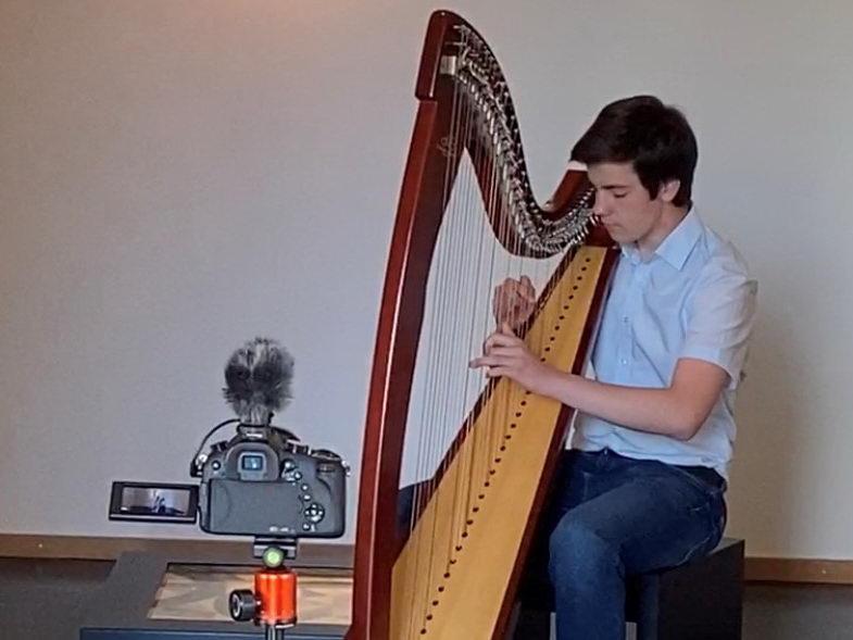 Konzert im Netz - Silvan Buzalkovski (Harfe) musiziert im Domschatz Minden. Foto: DVM/Hans-Jürgen Amtage