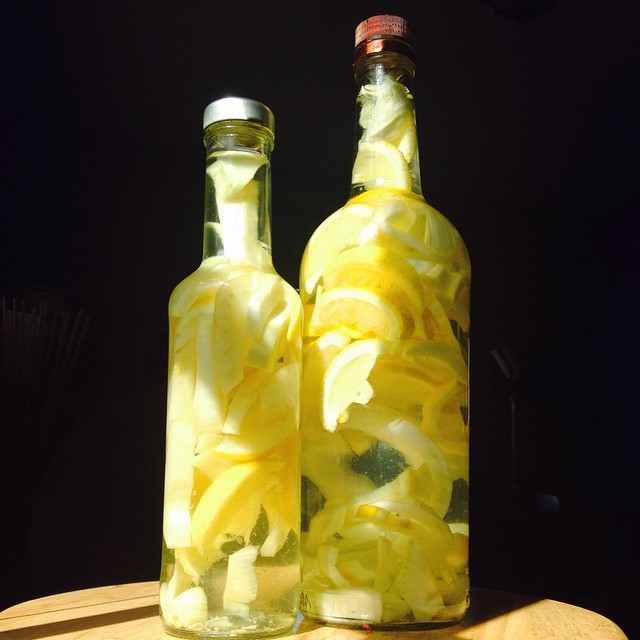 Lemon Fennel Gin infusions