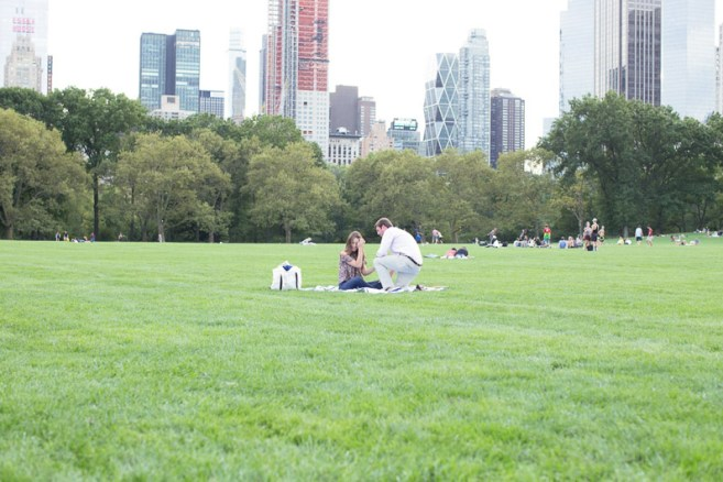 proposal-in-central-park