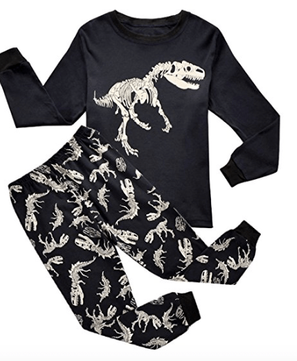 Dinosaur Gifts for Kids