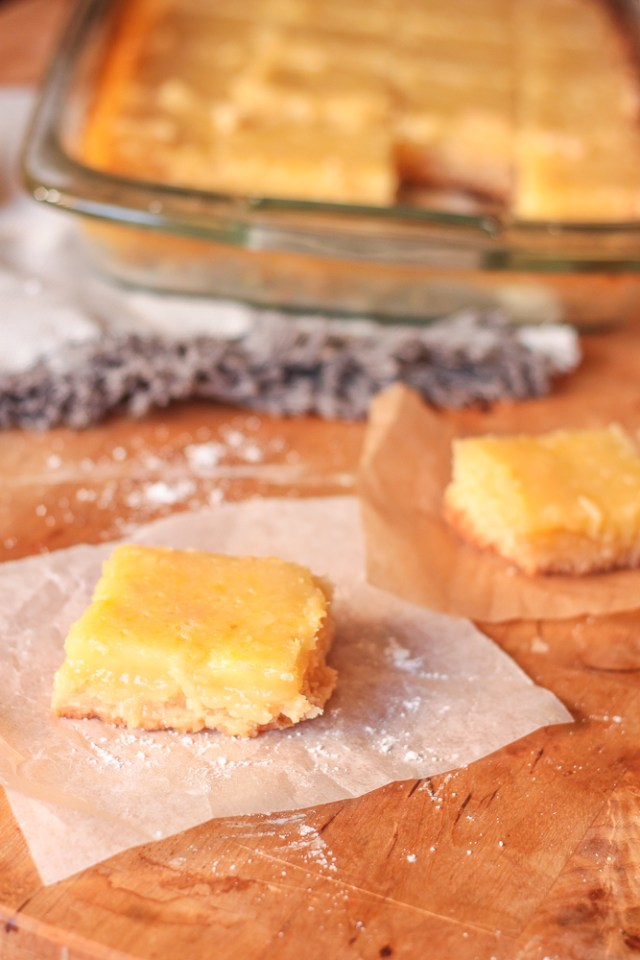 Lemon Bars | Domestic B(i)atch