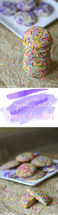 Sprinkle Crusted Sugar Cookies - Sprinkles make these simple but delicious sugar cookies extra festive