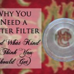 Why You Need a Water Filter (And What Kind I Think You Should Get)