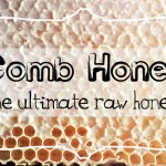 Comb Honey – The Ultimate Raw Honey