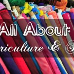 All About Sericulture and Silk