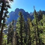 Camping, Hiking and Cave Touring in the Sequoias!
