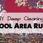 DIY Deep Cleaning Wool Area Rugs
