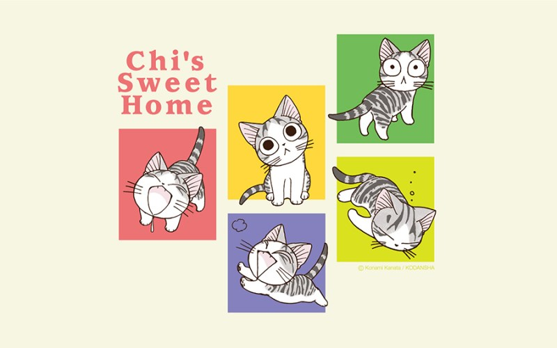 chis-sweet-home-full-250830