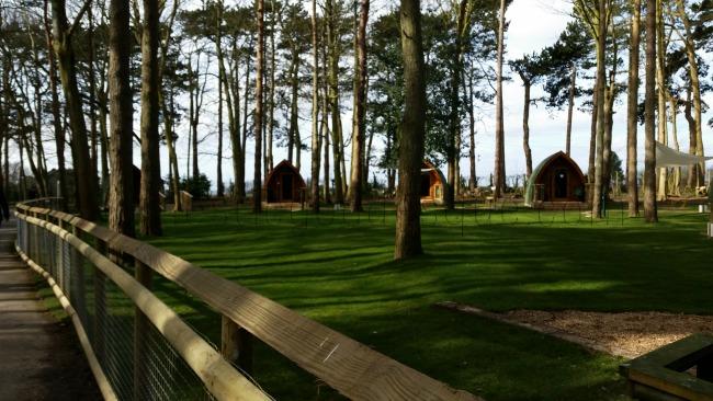 Camping pods at Port Lympne Kent