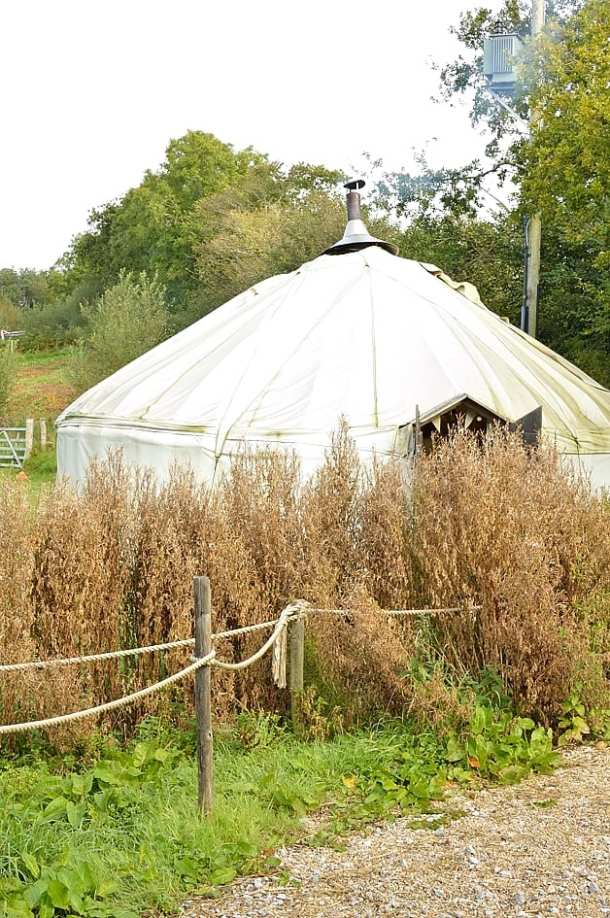 river cottage yurt