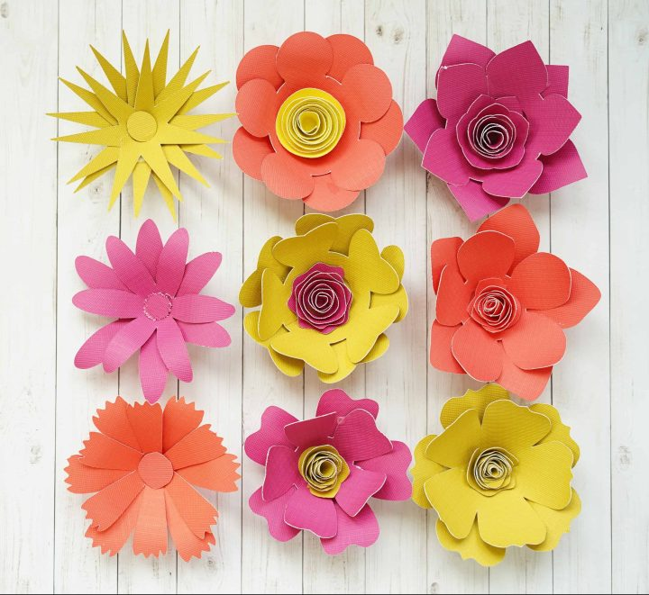 Semi-Rolled 3D Paper Flowers