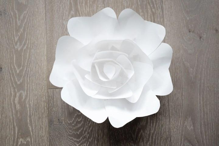 Large Paper Flower Set