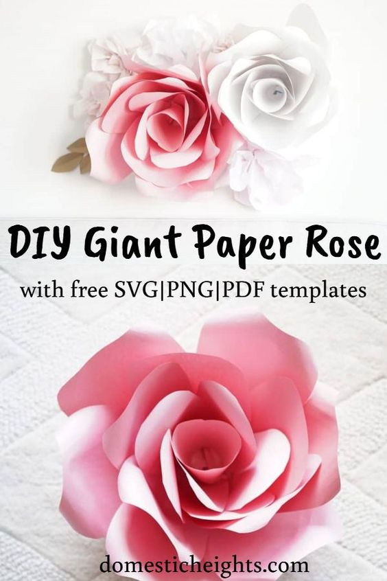 free giant paper rose flower template