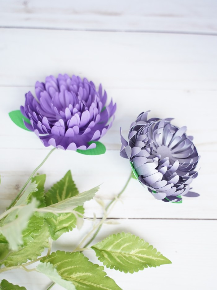 DIY Paper Flower template, free svg