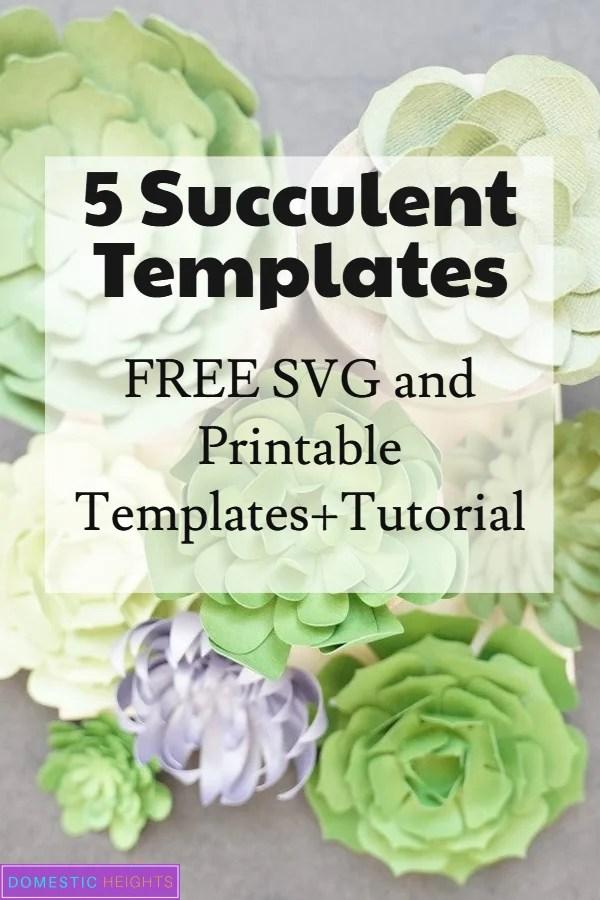 paper succulent flower template