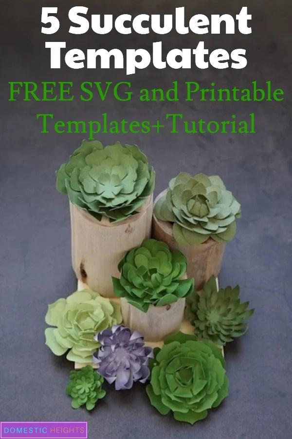 free succulent flower svg file for Cricut