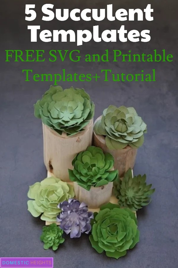 free succulent svg files