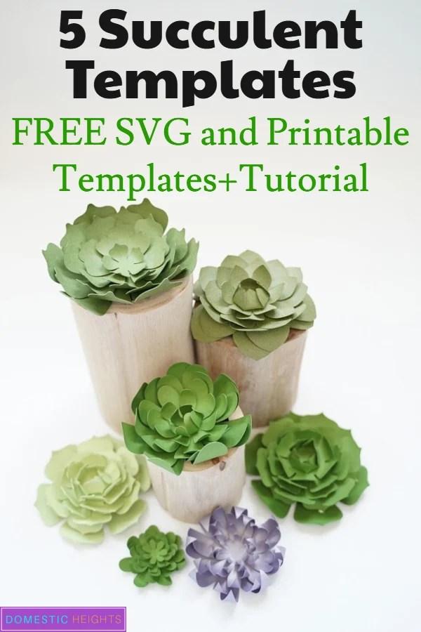 free succulent svg files