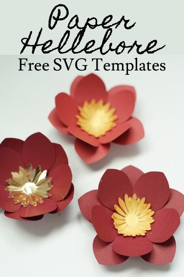 paper hellebore flower SVG