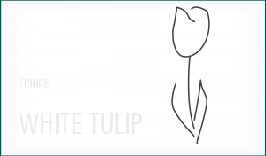 fringe___white_tulip_wallpaper_by_eozon-d4p2bxl
