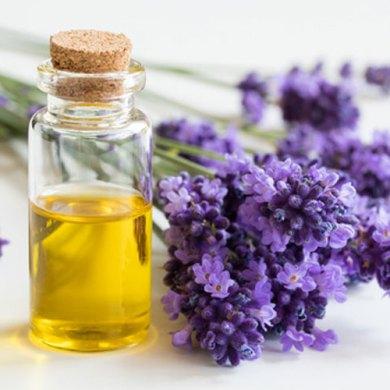 olejek zapachowy we flakoniku i świeża lawenda