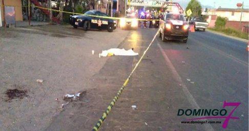 muere atropellado en carretera -2