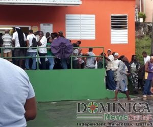 Preliminary report of OAS Electoral Observation Mission in Dominica for December 6 general elections