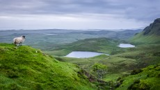 Île de Skye, Écosse.