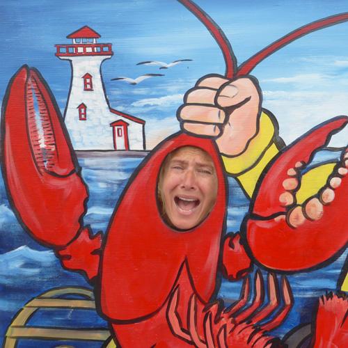La dure vie des homards