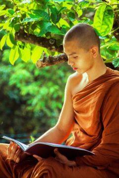 Le bouddhisme et la vie des moines de tradition Theravada 4