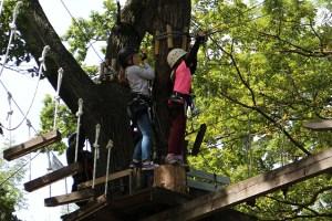 atrakcje w Pieninach - parki linowe