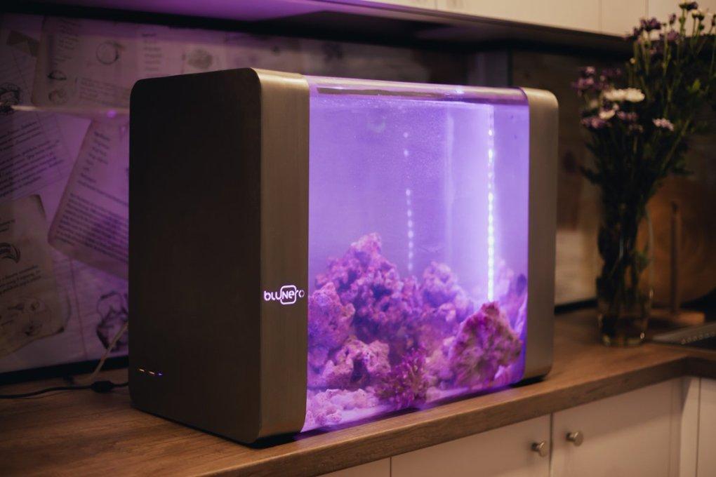 Les Aquariums Intelligents