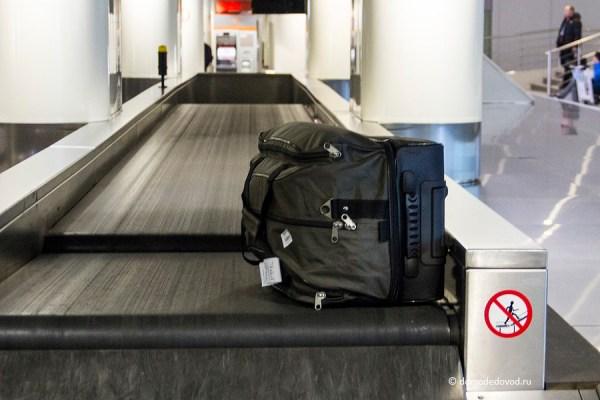 Приключения багажа в аэропорту Домодедово (7)