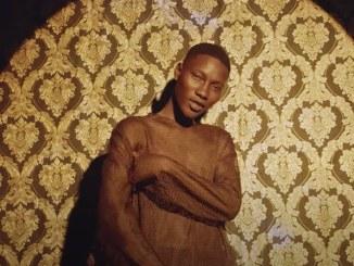 Naira Marley by Zinoleesky Video Download