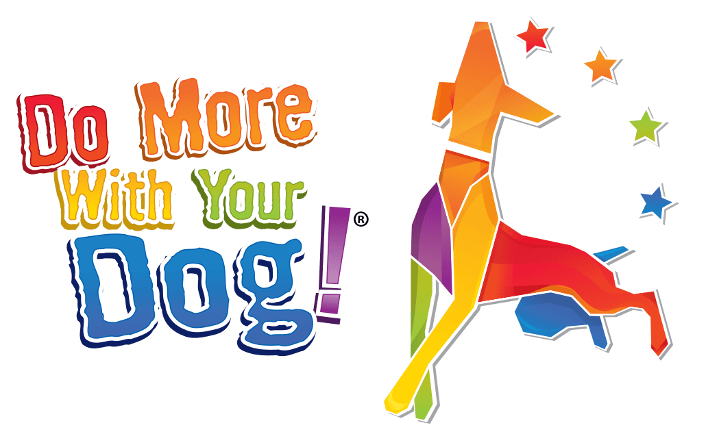 Do More With Your Dog!