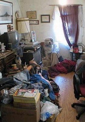 Почему дома всегда беспорядок: фото, причины постоянного ...