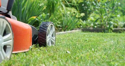 tondeuse en train de tondre un jardin