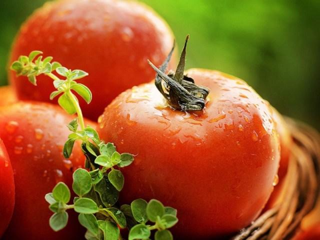 DOMUS 24® Apoio Domiciliário - Alimentos Antioxidantes -  Tomate