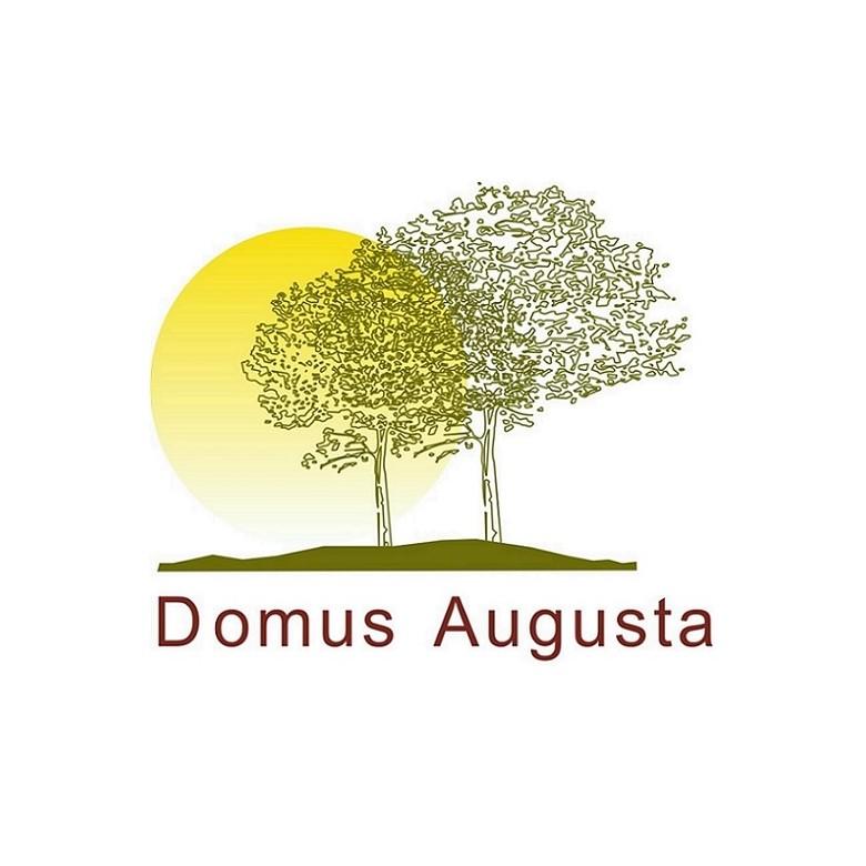 logo para por no formulario lar casa de repouso domus augusta