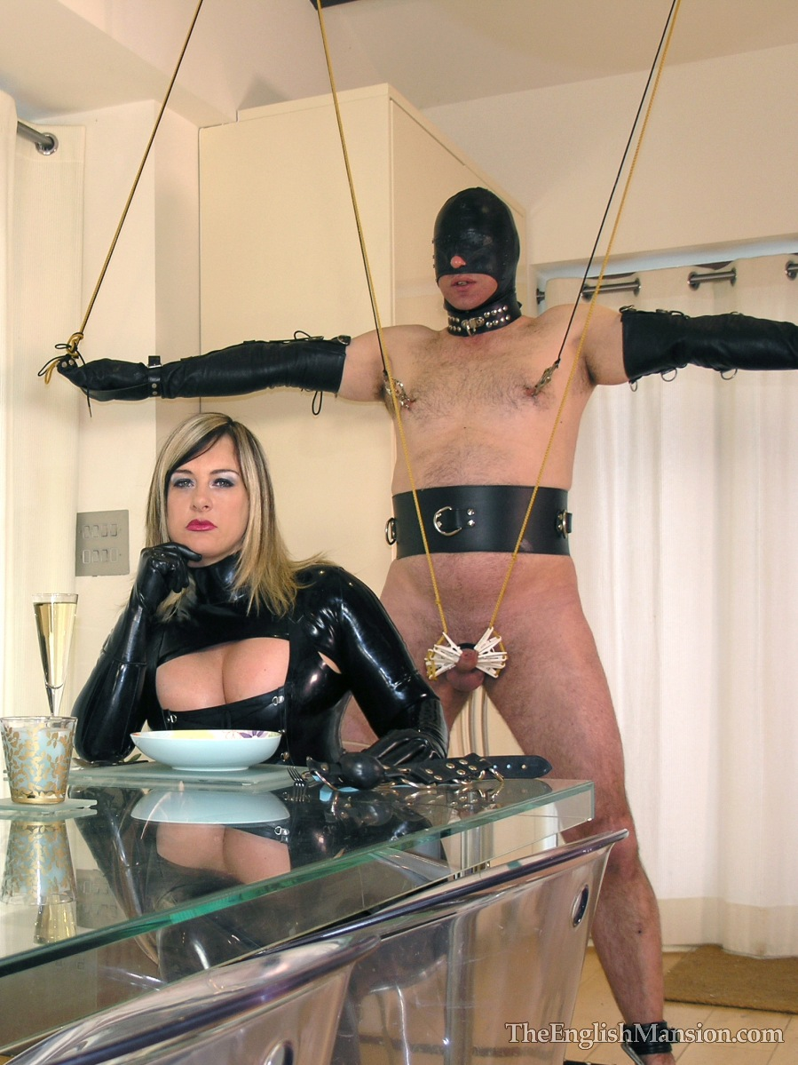 Femdom Toilet Slave Training Caption-5534